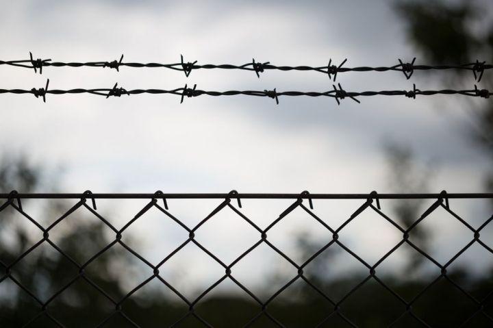 ograda žilet-žica